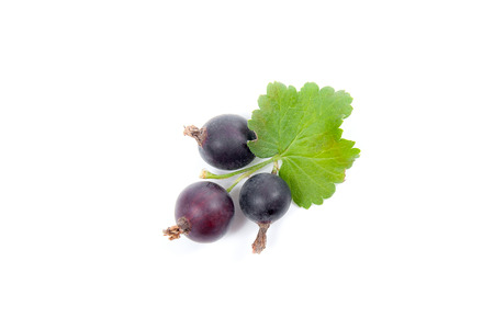 Close up view of black currant berry isolated on white background. A bunch of black currant with small green leaf of currant bush.