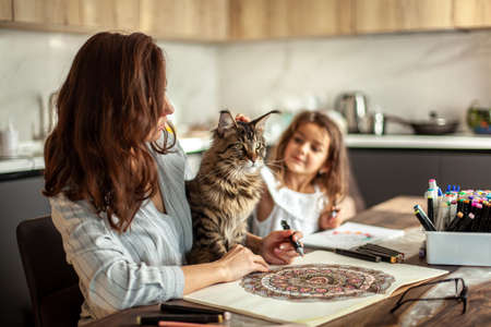 A young, slim and beautiful mother with a cute daughter and a Maine Coon cat is painting in the kitchen. Circular pattern mandala and zen drawing.