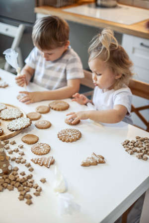 children decorate Christmas gingerbread at home. A boy and a girl paint with cornets with sugar icing on cookies. New Years decor, branches of a Christmas tree.