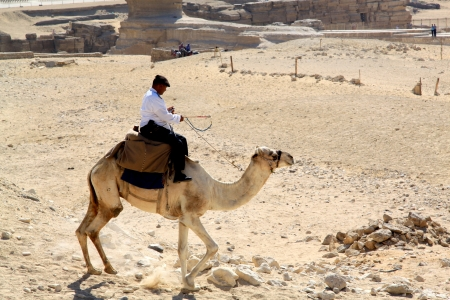 Egyptian policeman on a camel