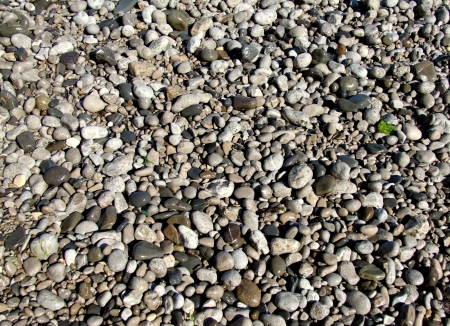 The texture of the beautiful sea pebbles Stock Photo - 20370568