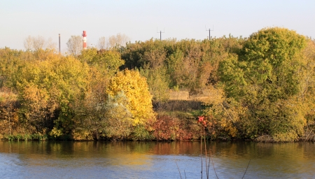 river bank: Yellow autumn leaves on the trees on the river bank