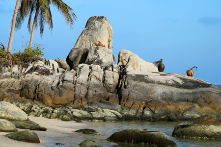 ancient turtles: Rock with a statue of a turtle on the beach in Thailand on Koh Samui Stock Photo