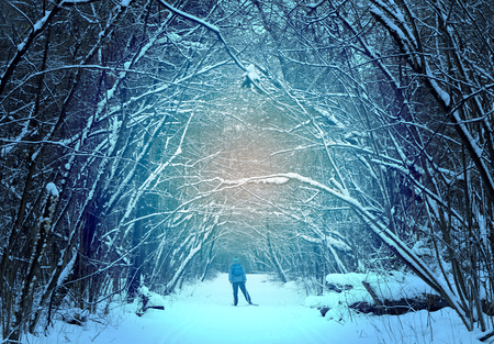 Beautiful abstract winter forest with people skiers