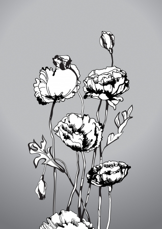 Hand-drawn poppy flowers. Floral composition. Vector