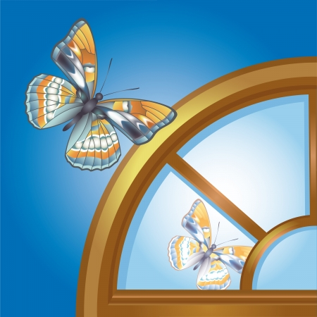 mansard: Butterfly reflected in arched window