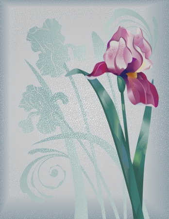 Textured grunge vertical background with lilac iris Illustration