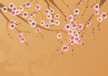 ciruela: Primavera flores de cerezo. Blooming ramas del cerezo