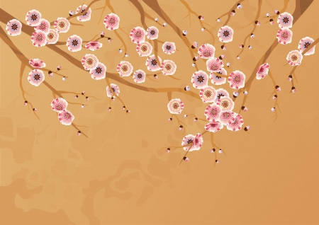 Spring cherry blossoms.  Blooming cherry tree branches Vector