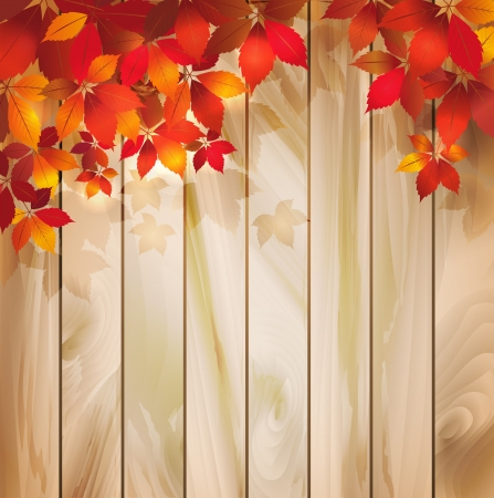 Autumn background with leaves on a wood texture Vector