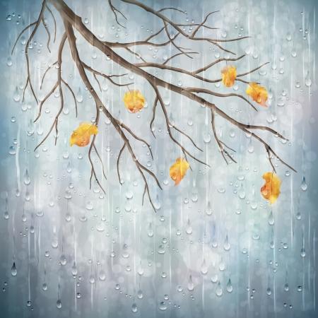 Herfst seizoen regenachtig weer artistiek ontwerp boomtak, gele bladeren, transparante druppels water op mistige grijze wazige natuurlijke wallpaper achtergrond Mooie natte herfst vallen realistische vector landschap