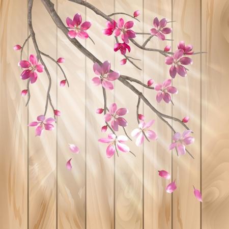 Primavera flores de cerezo en flor de una textura de madera dise�o floral vector art�stico con hermosas flores de color rosa cereza ciruelo en flor, rama de �rbol, p�talos de oto�o, los rayos del sol, efecto de luz en una cerca de madera