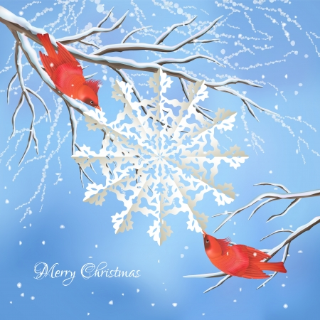 winter scene: Christmas vector background with red birds  Illustration