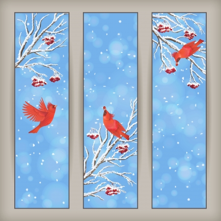 Vertical Christmas banners with birds, Rowan tree branches and berries in frost, snowflakes, bokeh elements on blue abstract background.  Vector