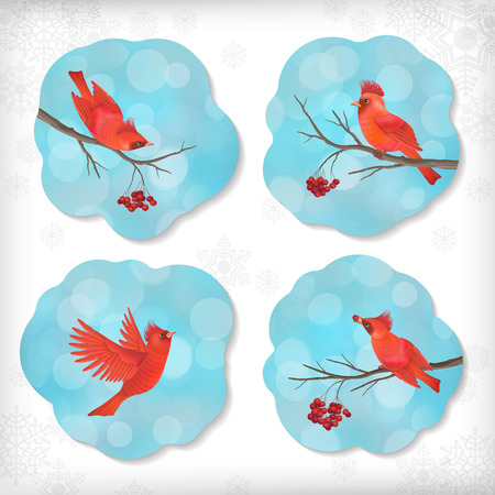 Winter vector set of Christmas stickers with birds waxwing, Rowan berry, tree branches, snowflakes, bokeh on cloud shapes blue abstract background. Holiday Xmas design elements Vector