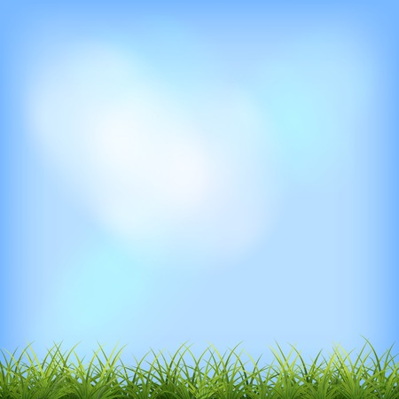 rural scene: Green grass and blue sky natural background. Vector summer day rural scene