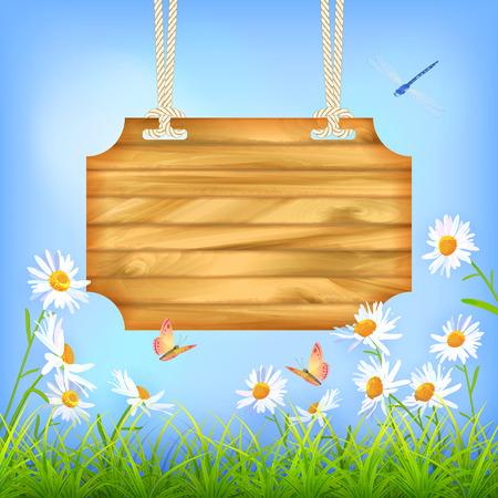 summer day: Vector Tarjeta de la muestra de madera que cuelga en una cuerda, cielo azul, c�sped verde, flores de la margarita, mariposa, lib�lula. D�a de verano de fondo natural ...