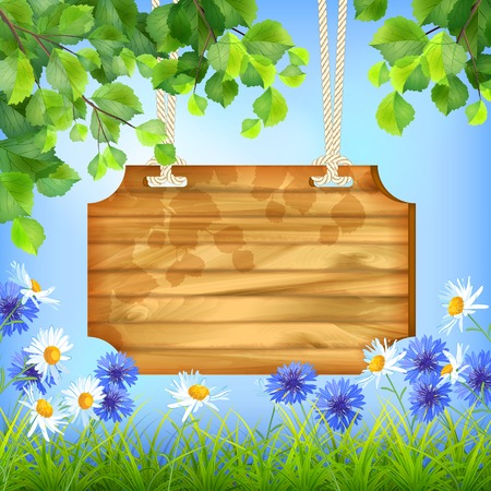 marguerite: Vector summer day natural background with wooden sign board hanging on a rope, blue sky, tree branches, green leaves, grass, field flowers
