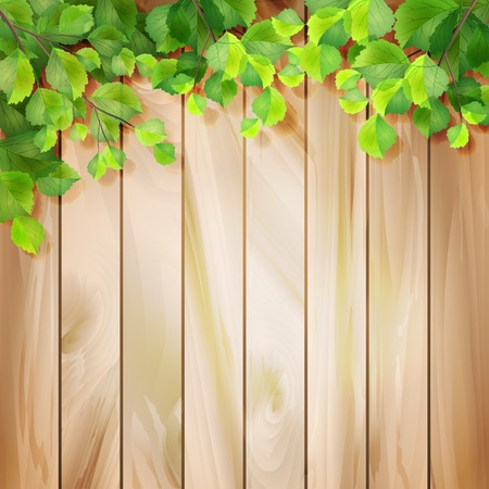 wooden fence: Green leaves on a wood texture  Vector season background with tree branches, sunlight coming through the leaves, drop shadow on a wall, wooden textured fence