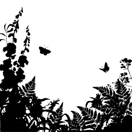 flower borders: Vector wild grass, herbs and flowers silhouette background