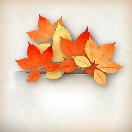 Retro vector autumn fall leaves  inserted in a paper pocket  Artistic abstract background Vector