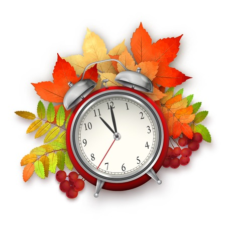 Autumn vector composition with fall leaves, alarm clock, red bow, Rowan berries on white background Vector