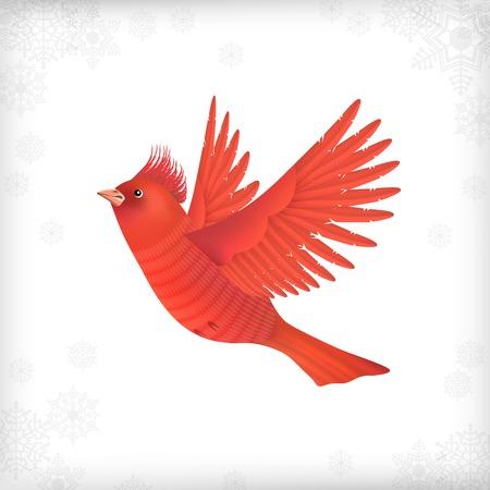 Winter vector Christmas card with flying bird waxwing Vector