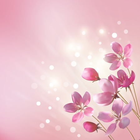 springtime flowers: Shining pink flowers background.  Romantic vector floral card