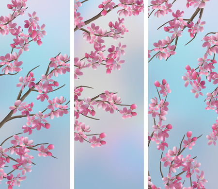 tree vertical: Spring vertical banners with Japanese cherry - Sakura blossoms