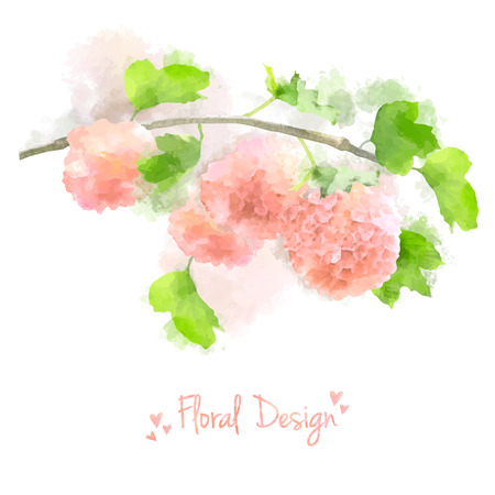 Pink Vector Watercolor Flowers Hydrangea on white background. Contemporary floral greeting card