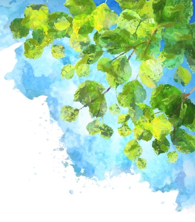Green leaves, tree branches, vector watercolor summer background. Birch foliage drawing on blue sky painting Vectores