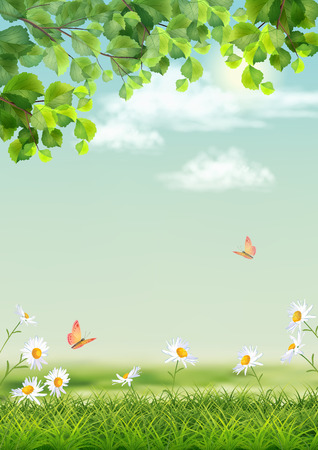 Vector summer landscape with grass, flowers, tree branches, butterfly
