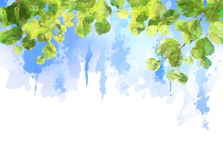 Green leaves, tree branches, vector watercolor summer background. Birch foliage drawing on blue sky painting Vettoriali
