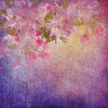 grunge floral: Vintage grunge background with spring apple tree flowers. Painting style floral art on expressive shabby fabric texture