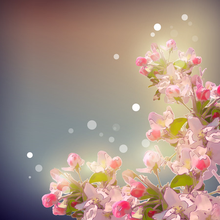 blinding: Shining Cherry blossom background.  Romantic vector floral spring season beautiful card
