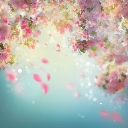 Spring kersenbloesem achtergrond met dalende bloemblaadjes Stockfoto