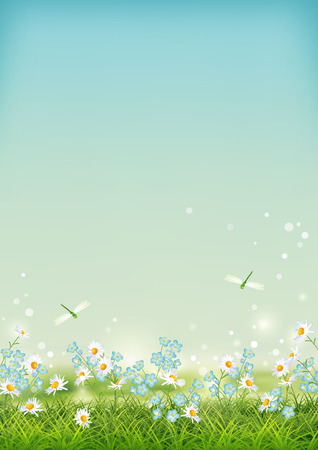 Vector summer landscape with grass, flowers, dragonfly