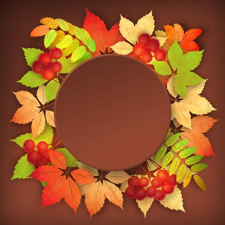 Vogelbeere: Vektor Herbst Hintergrund mit Vogelbeere und Ahorn-Blätter fallen