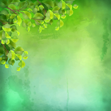 expressive: Decorative vector grunge watercolor background with green leaves on expressive painting texture Illustration