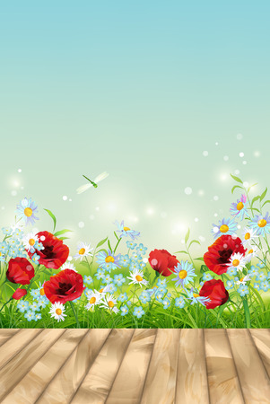 field flowers: Vector summer landscape with grass, flowers, dragonfly, textured wooden floor