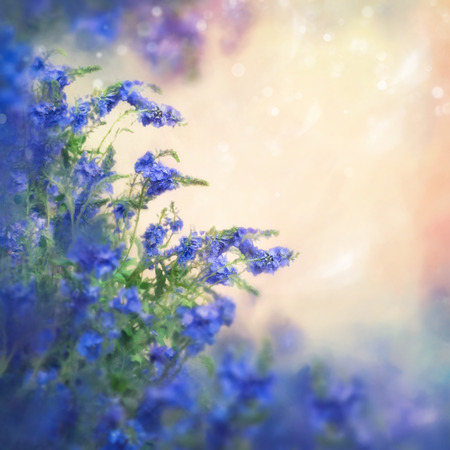 defocus: Beautiful defocus blur illustration with blue flowers, romantic shining bokeh background, space for text