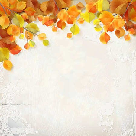 birch leaf: Vector season background with autumn leaves, decorative white plaster wall