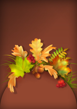 fall leaves: Vector autumn background with oak and maple fall leaves, rowan berry, grass