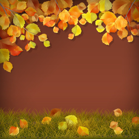 fall leaves: Vector season background with autumn tree branches, fall leaves on grass