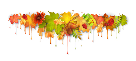 Vector autumn fall leaves with dripping paint, artistic border design on a white background Illustration