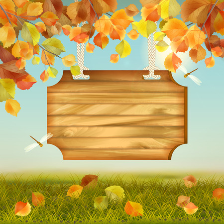 Vector autumn landscape with wooden board, grass, fallen leaves, tree branches, dragonfly