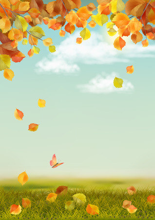 Vector autumn landscape with grass, fallen leaves, tree branches, butterfly