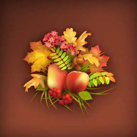 Vector autumn harvest background with apple, pear, flowers, oak and maple fall leaves, rowan berry, grass