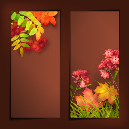 leafage: Vector autumn banners with rowan berry and maple fall leaves, flowers, grass Illustration