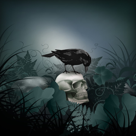 raven: Halloween vector night scene with skull, black Raven, stones and fern